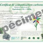 certificat-compensation-carbone