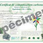 certificat-compensation-carbone1