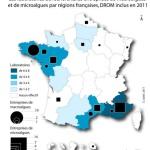 Algues France 2011