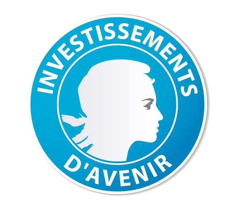 http://www.greenunivers.com/wp-content/uploads/2013/01/investissement-davenir.jpeg