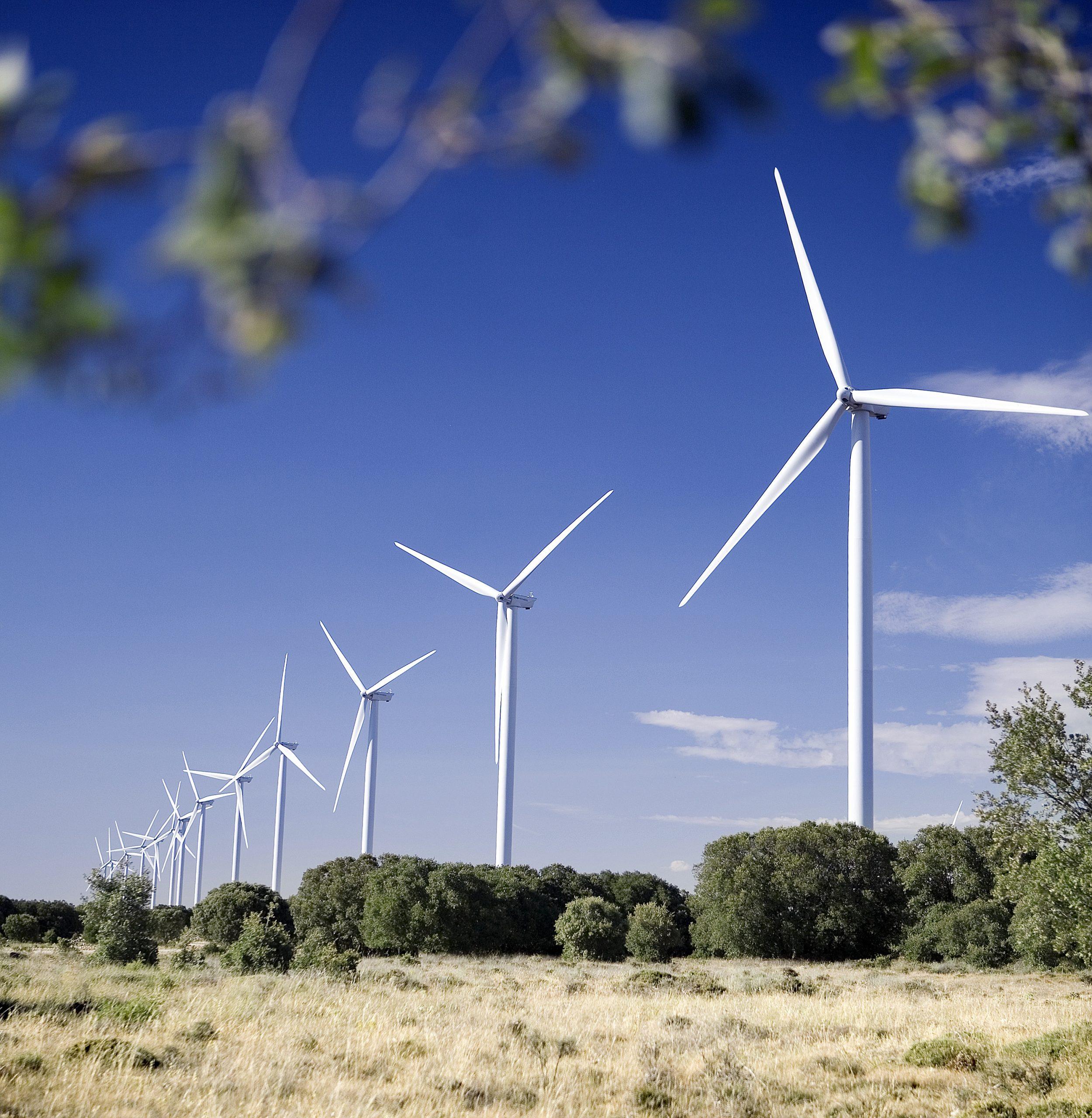 Le portugais EDPR va recycler ses pales d'éoliennes
