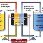 batterie-circulation