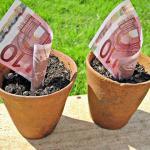 Euro in pots