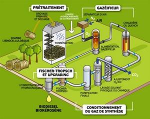 Schéma de la voie thermochimique : après avoir été torréfiée, la biomasse est gazéifiée. Les gaz de synthèse produits sont purifiés, puis transformés en mélange d'hydrocarbures, prêts à devenir du carburant. (Crédit : Total)