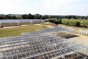 Une serre PV de 50 000 m² dans le Maine-et-Loire, d'une puissance installée de 4 489 kWc. (Crédit : GEP)