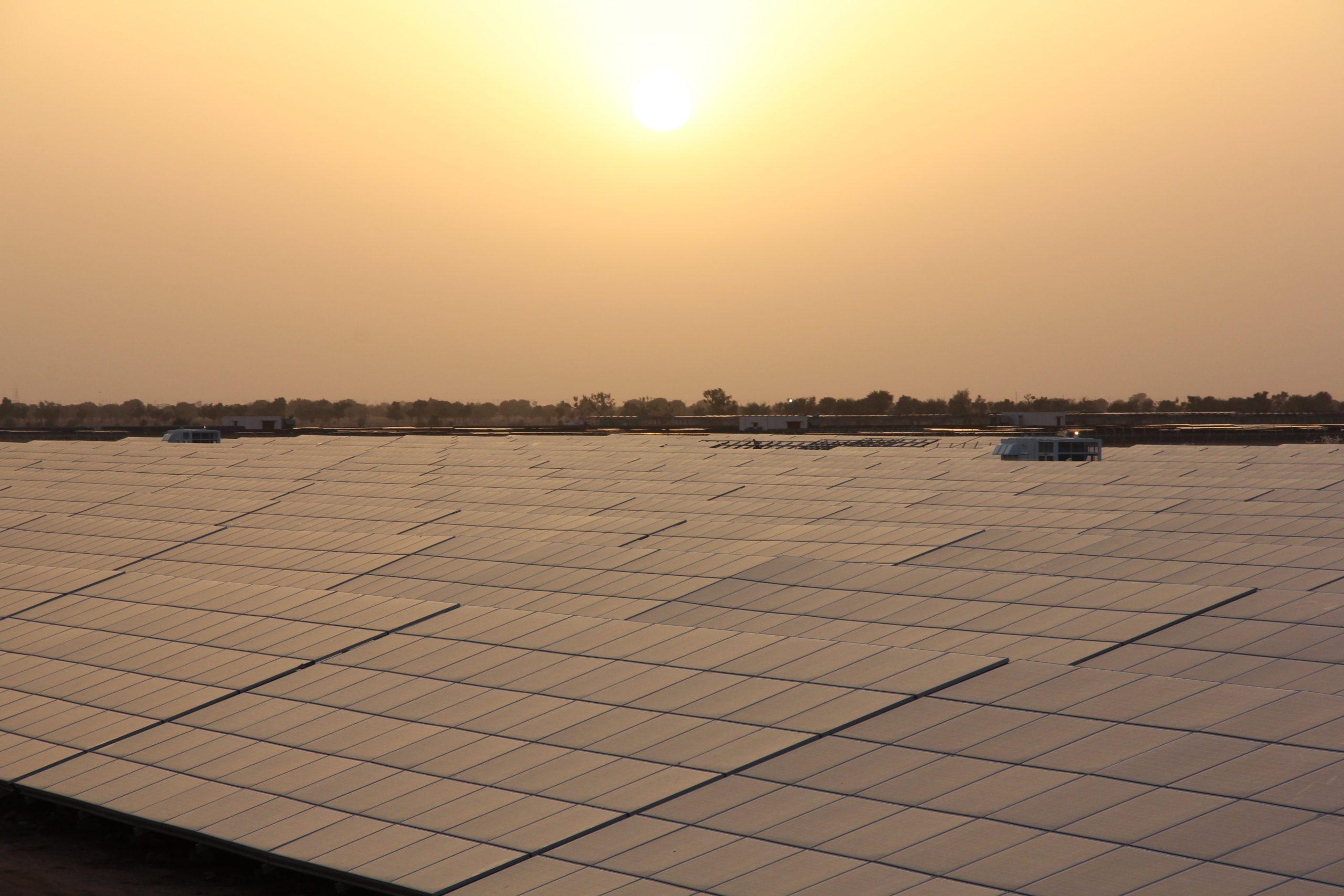 Thierry Lepercq (Solairedirect) : «En Inde, le solaire est moins cher que le charbon»