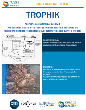 TROPHIK.PNG_content_embed_medium