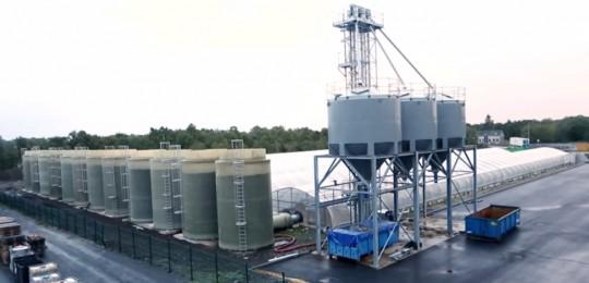 Valoriation-de-la-chaleur-de-cogénération-de-META-Bio-Energies-en-serres-540x260
