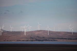 asutralie-wind