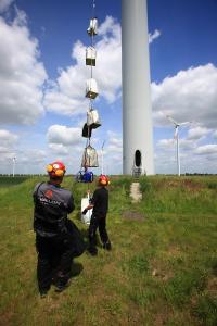 Windpark Schnellin