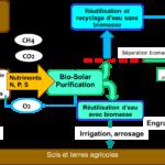 Cycle-BSP