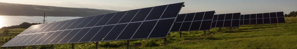 community_solar_web_banner-980x162
