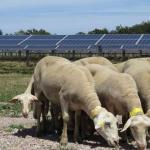 Arkolia Energies reprend l'activité renouvelable d'Idex