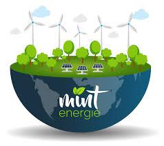 Mint Energie et Selectra parient sur l'électricité verte «low cost»