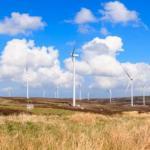 EDF energy FallagoJune13-35-540×360