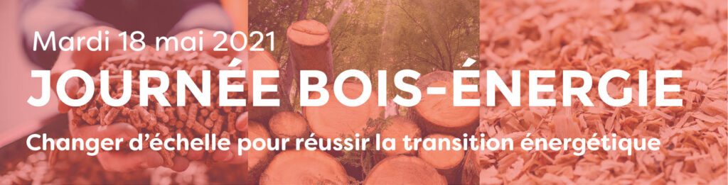 Journée digitale Bois-Énergie 18 mai
