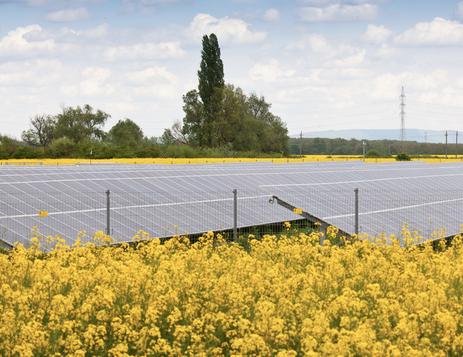 Omnes Capital poursuit son offensive dans le solaire irlandais