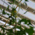 Solar cloth 2